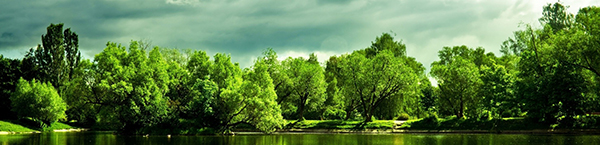 clouds-with-green-nature-1920x1080